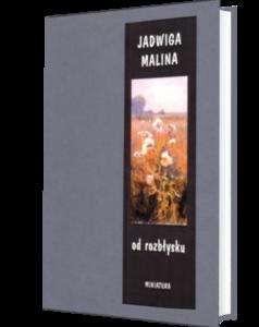 Okładka książki Od rozbłysku